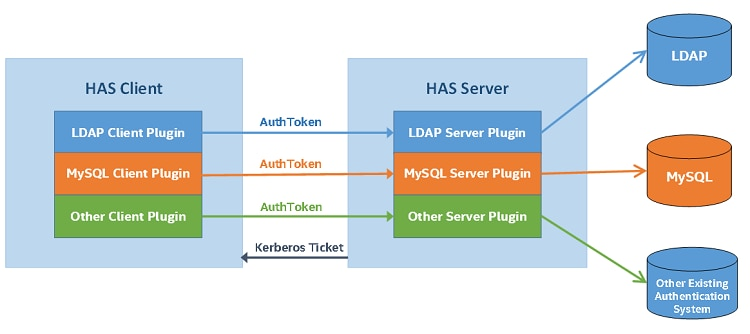 HAS Client and Server Diagram