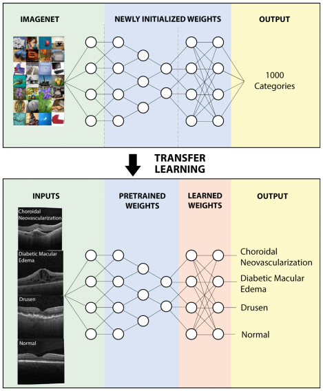 Schematic depiction transfer learning