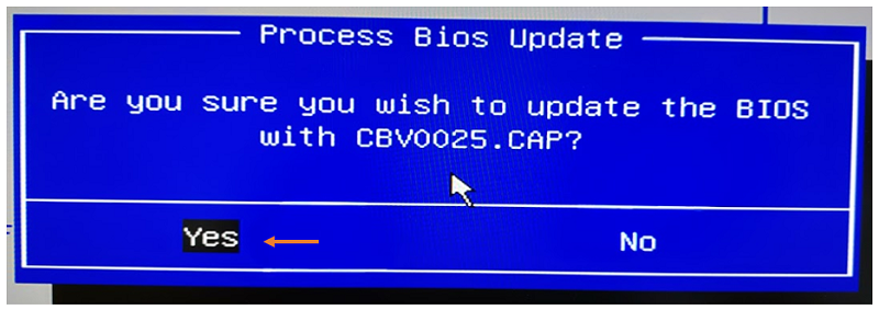 Confirm you want to update the BIOS