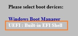 Select UEFI: Built-in EFI Shell