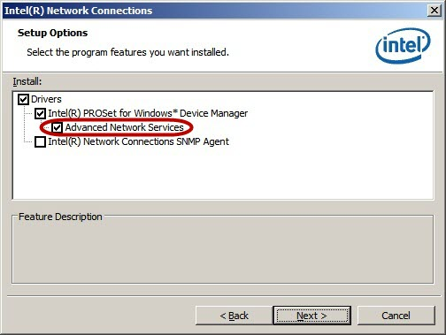 Install Intel® ANS teaming software
