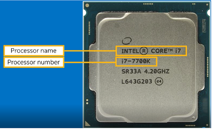 Processor name and number