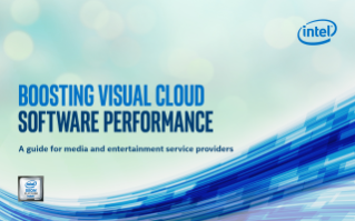 Boosting Visual Cloud Software Performance