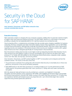 Virtustream Offers Security in the Cloud for SAP HANA*