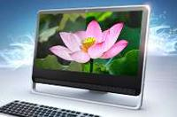 pink flower on laptop screen