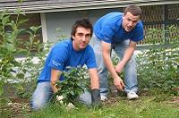 two male Intel volunteers work planting green spaces